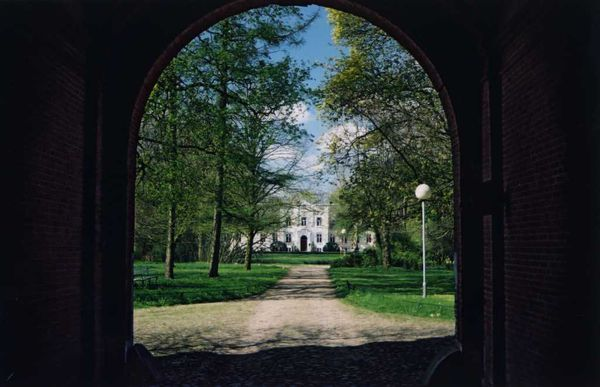View into the Park